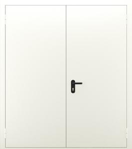 Двупольная глухая дверь ДПМ 02/60 (EI 60) — №08 (NEW)