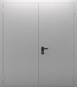 Двупольная глухая дверь ДПМ 02/60 (EI 60) — №09 (NEW)
