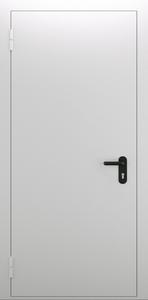 Однопольная глухая дверь ДПМ 01/60 (EI 60) — №05 (NEW)
