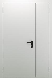 Полуторопольная глухая дверь ДПМ 02/60 (EI 60) — №05 (NEW)
