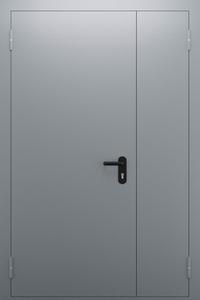 Полуторопольная глухая дверь ДПМ 02/60 (EI 60) — №06 (NEW)