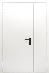Полуторопольная глухая дверь ДПМ 02/60 (EI 60) — №08 (NEW)